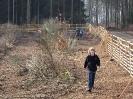 Waldprojekt Berghofen_5