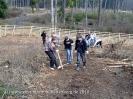 Waldprojekt Berghofen_15