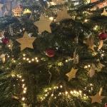 Weihnachtsbaum _7